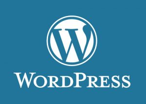 WordPress Training in San Angelo, Texas